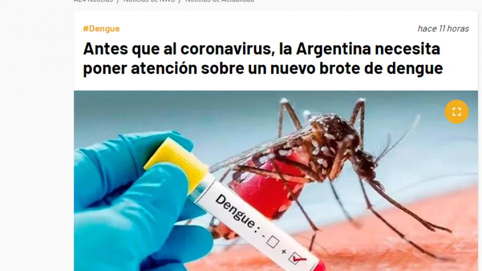 dengue A24