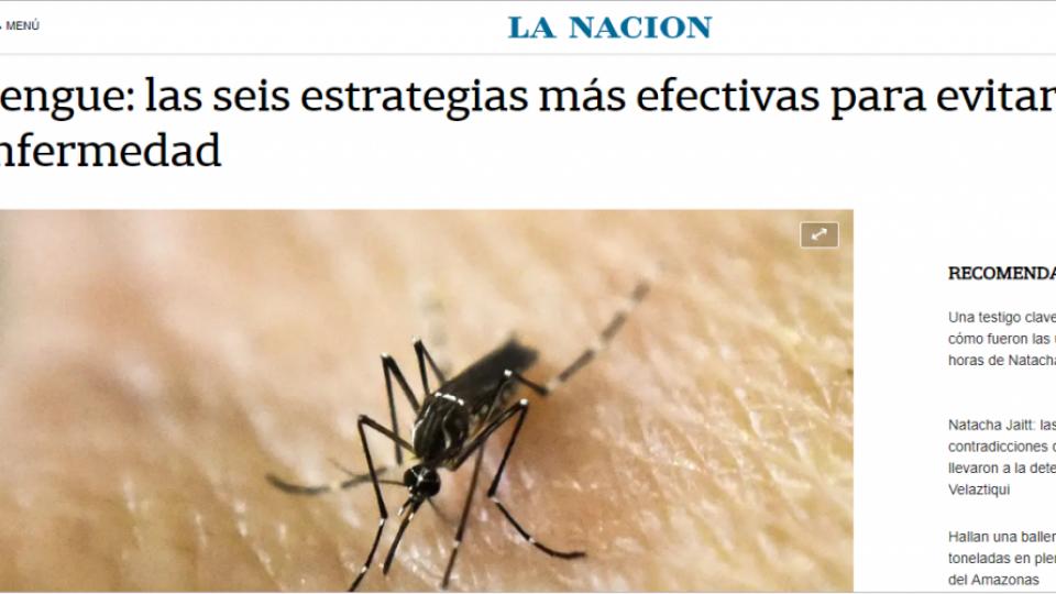 dengue LN